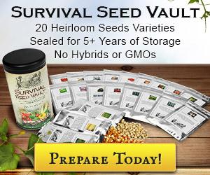 seedvault-300x250_02